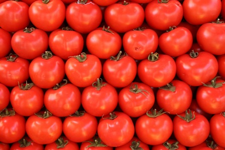 Time for Tomatoes